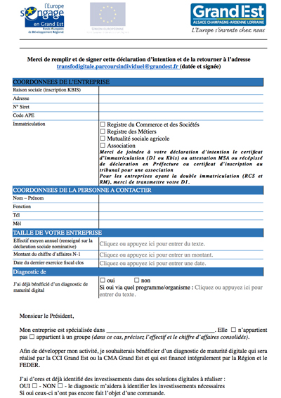 Grand-Est-Declaration-d-intention-transfodigitale-parcours-individuel